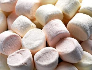alg-marshmallows-1-jpg