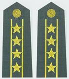 Quân hàm đại tá, 2 gạch 4 sao.